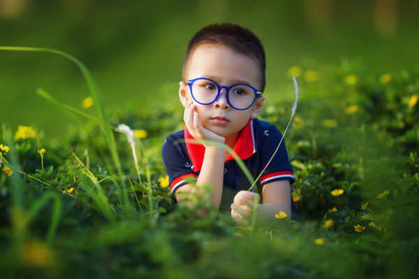 牧草地の小さな男の子