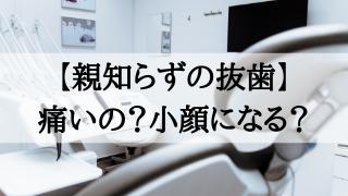 歯科の患者台