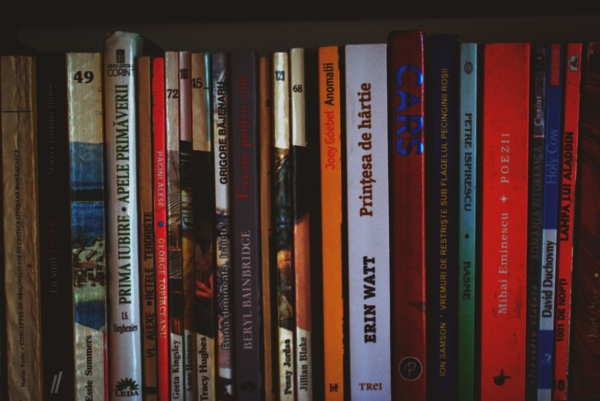 棚にある各種タイトルの本